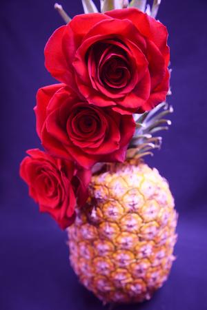 Fancy Pineapple