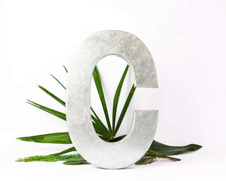 Creative horizontal layout of metallic letter C and exotic leafs on white paper background