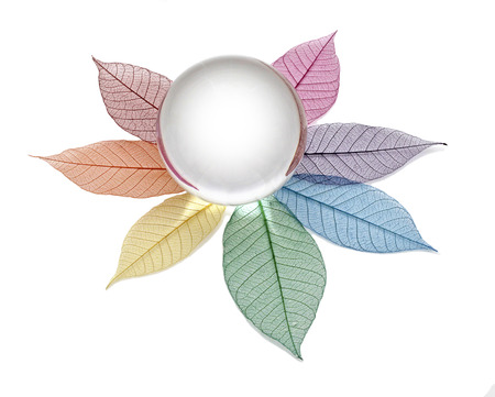 crystal therapy: Blank crystal ball on skeleton leaves Stock Photo