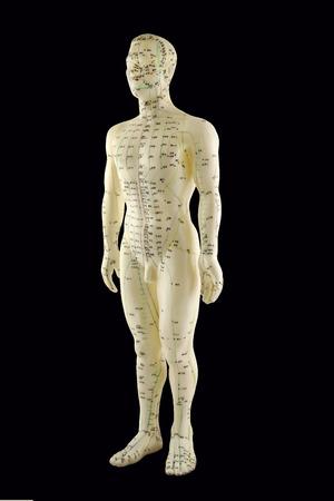 Modelo de la acupuntura - medicina tradicional china Foto de archivo - 29026865