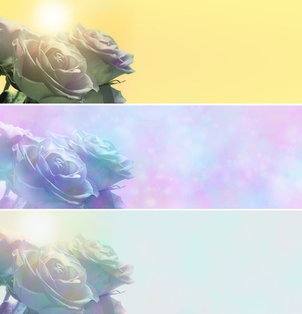 Roses website banners x 3