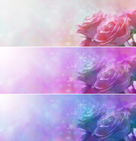 you are special: Sparkling Rose Heads Banners x 3