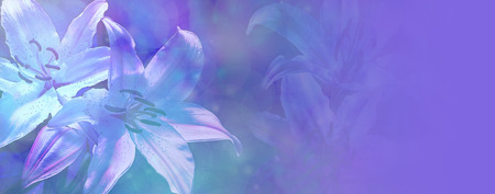 Beautiful Blue Wedding Lillies Banner photo