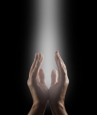 Worshiping the Creator Imagens