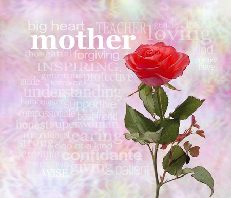 mothering: A Rose for Mother Stock Photo