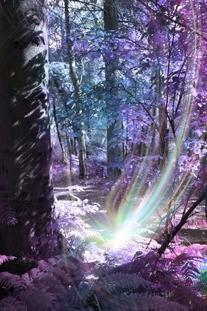 wood nymph: Tree Spirit Birth Stock Photo