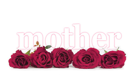 wide open spaces: Mothers day roses banner