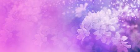 Pink Wedding Blossom website header Stock Photo