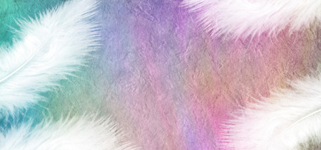 White Feathers on Rainbow Stone Effect Background  A white feather at each corner of a wide rainbow colored stone effect background creating a frame with plenty of copy space