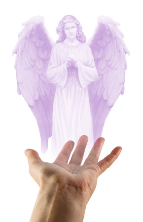 apparition: guardian angel, angel, angelic, rainbow, spectrum, healing,seeking help, apparition, reiki, peace, love, gentle, caring, divine, spiritual, spirit, universal, energy, aura, heal, healer, beautiful, concept, white background, color, colorful, praying, holi
