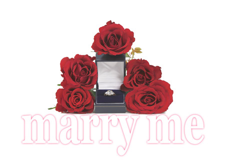 trilogy: Marriage Proposal with roses and ring     Three stone diamond engagement ring in a box surrounded by five red rose heads with the words MARRY ME beneath on a white background Stock Photo