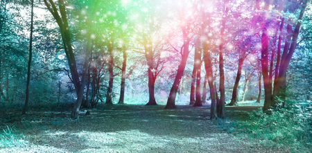 Magical Spiritual Woodland Energy Background - Jade blue colored woodland scene with rainbow sparkles depicting supernatural energy
