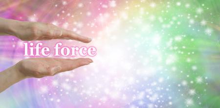 """universal love: Su fuerza de la vida está en tus manos - Mujeres manos paralelas con las palabras """"fuerza de la vida, flotando entre rodeado de un destellos en un arco iris de colores de fondo en colores pastel y un montón de espacio de la copia Foto de archivo"""