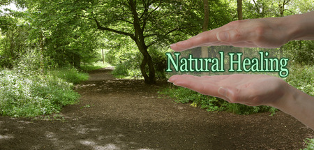 Le chemin de la guérison naturelle - les mains parallèles femelles avec les mots Natural Healing flottants entre sur un fond vert de chemin de bois représentant le chemin de la guérison naturelle Banque d'images - 46156567