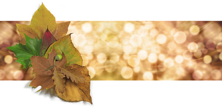 nov: Autumn Leaf Bokeh Website Banner - Graphical wide bokeh orange and gold background header with a small group of autumn leaves on left side Stock Photo