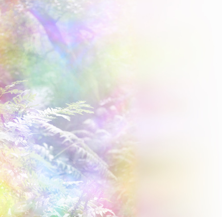woodland scenery: Rainbow Foliage Background -   woodland foliage with a delicate rainbow color effect applied giving a soft misty nature scene and plenty of copy space, ideal for a natural  healing theme