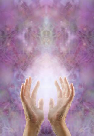 universal love: Al sentir la energ�a curativa sagrada - manos femeninas que alcanzan hasta la curaci�n con luz de energ�a entre en una lila sagrada de color rosa de fondo intrincado patr�n sim�trico