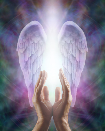praying angel: Male hands reaching up into a beautiful pair of lilac Angel wings with white light Stock Photo