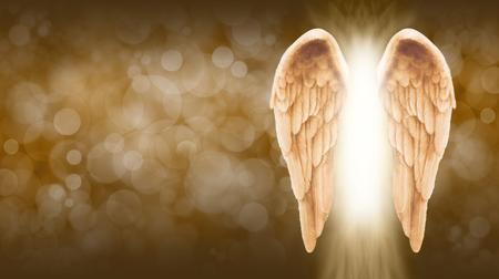 Goldener Engel Flügel auf goldbraun Bokeh Banner - Breiter goldbraun Bokeh Hintergrund mit einem großen Paar Engelsflügel auf der rechten Seite und einer Welle von hellem Licht zwischen
