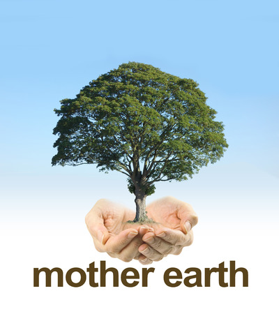 Look After Mother Earth - female cupped hands on a clear blue sky background fading to white with a mature tree floating above hands and the words MOTHER EARTH underneath Stock Photo