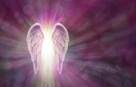 universal healer: Angel Wings on Magenta  Bokeh Banner - Wide magenta bokeh background with a pair of Angel Wings on the left side and a shaft of bright light between radiating outwards and copy space all around