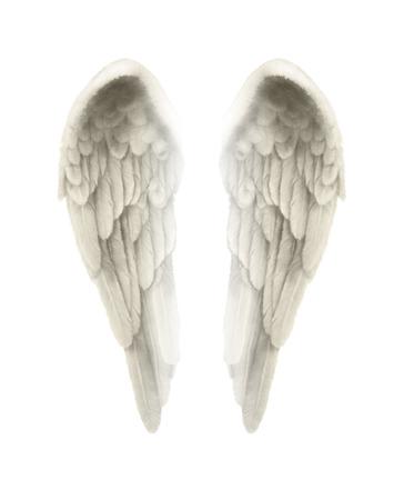 3D-afbeelding van Angel vleugels geïsoleerd op een witte achtergrond - Fijn gedetailleerde symmetrische illustratie van geïsoleerde engelenvleugels met een zweem van goud kleuren Stockfoto
