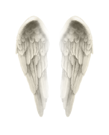 3D-afbeelding van Angel vleugels geïsoleerd op een witte achtergrond - Fijn gedetailleerde symmetrische illustratie van geïsoleerde engelenvleugels met een zweem van goud kleuren
