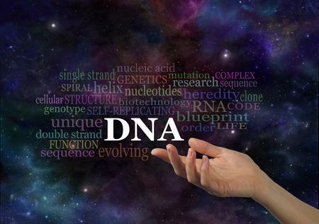Chakra de la energa de equilibrio soft pastel de color campo de 56999264 los detalles de adn mano femenina con el adn siglas flotando por encima rodeados por una nube de palabras relevantes en un espacio de tiempo malvernweather Image collections