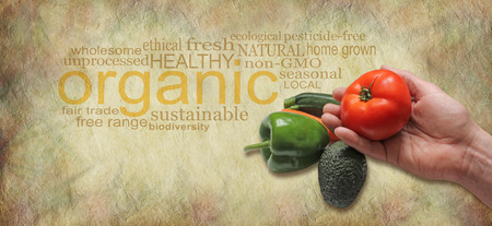 pesticide free: Offering Organic Fresh Produce Website Header - male hand holding a beef tomato on a rustic background with an organic word cloud behind and copy space beneath