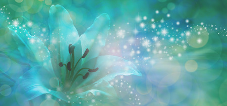 outwards: Sparkling Lilly Banner - beautiful  lily head with glitter and sparkles radiating outwards from the center on a jade green and blue bokeh background with copy space Stock Photo