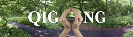 Take the Path to Qi Gong Healing - female hands making the O of the word GIGONG on a wide banner showing a three way path through a woodland scene