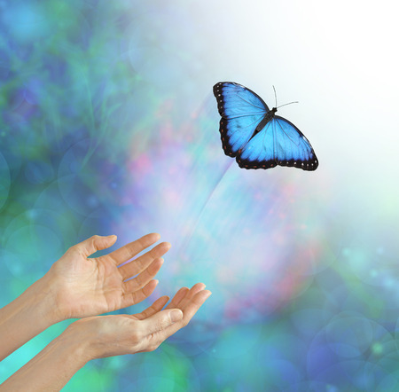 빛 속으로 - 영혼을 풀어 주거나 가볍게 두는 은유 적 표현, 나비, 여성의 손, 미묘한 배경 및 하얀 빛