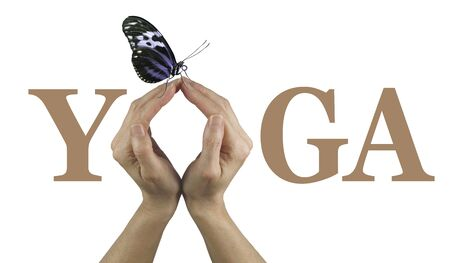 healing chi spiritual: Offering You Yoga - Female using both hands to make an O in the word YOGA isolated on a white background with a closed wing resting butterfly perched delicately on the top of her fingertips Stock Photo