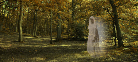 ghostly: Ghostly figure gliding through Autumn Forest  - Wide autumnal woodland scene with a transparent glowing female ghost wafting across from right side staring out and late evening lighting Stock Photo
