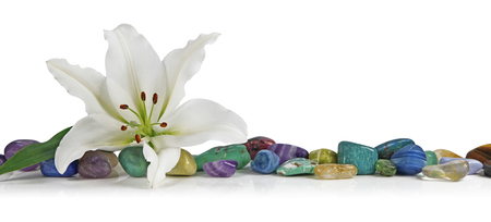 white stones: White Lily and healing Crystal - a solitary lily place on top of a row of multicolored tumbled healing stones on a white background
