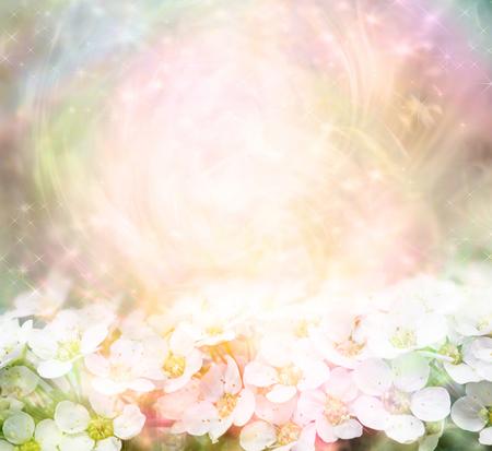 Fondo brillante de flor de primavera - melocotón suavemente coloreado fondo multicolor rosa con estrellas brillantes girando alrededor de una bola de luz y flor de primavera a lo largo de la parte inferior