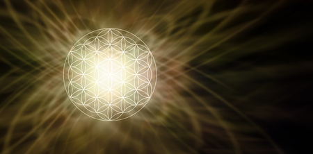universal love: Illuminated Flower of Life Sepia Background - glowing soft focus circular flower of life symbol pattern on left side of a wide dark brown background with copy space on right Foto de archivo