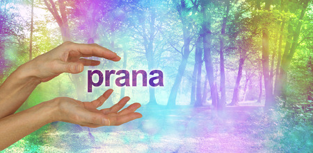 prana: Beautiful Prana Healing Energy  - female hands with the word PRANA floating between in front of an ethereal rainbow colored bokeh effect magical woodland scene  and copy space Stock Photo