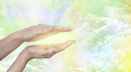Qi Gong  healing Energy - female hands held in parallel position with a golden glow between with a yellow green ethereal woodland background and copy space