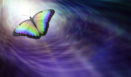 Symbolic Spiritual Release -  Beautiful multicoloured butterfly moving into the light depicting a departing soul Stok Fotoğraf - 83726560
