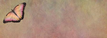 Tablero de mensajes de mariposa - una mariposa de alas abiertas color melocotón único en la esquina superior izquierda sobre un fondo de efecto de piedra de color melocotón ancho rústico con espacio de copia para mensajes Foto de archivo - 86104259