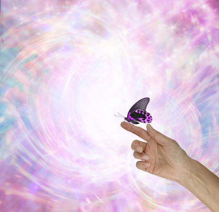 The fascinating energy of a Butterfly - female hand out stretched with a pink and black butterfly sitting peacefully on her index finger against a swirling pink energy field with copy space