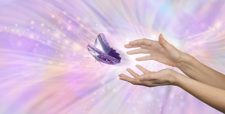 The beautiful peaceful moment of a butterfly being released - soul release metaphor - female hands appearing to let go of a butterfly on a pink energy flowing background with copy space 版權商用圖片