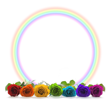 Rainbow coloured roses and  rainbow circle border -  A row of seven chakra coloured rose heads in front of a rainbow circle border on white background with plenty of copy space