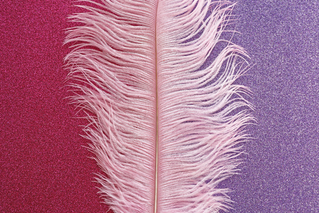 Pink wispy ostrich feather laid flat on pink and purple sparkly background