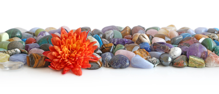 Lone flower head and healing crystal header - Orange Flower head placed at the front of a a neat selection of multicoloured healing chakra stones against a white background Stock Photo
