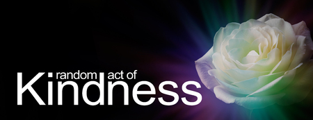 Gift Someone a Random Act of Kindness - a black background with beautiful white rose head and the words RANDOM ACT OF KINDNESS with copy space above Imagens