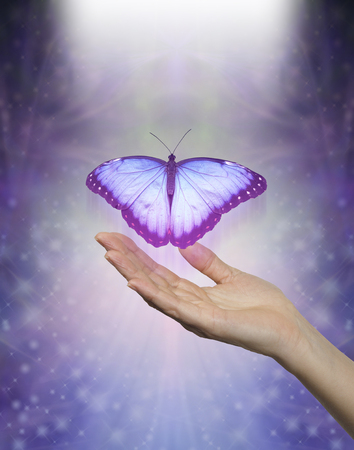Spirit Release depicted by a lilac blue Butterfly taking flight