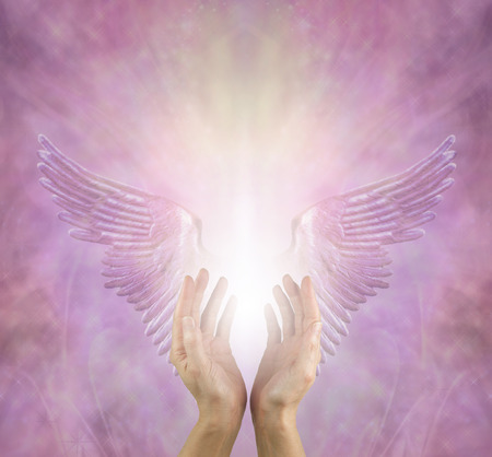 The Angels are always helping me - female healer with hands reaching up between silver lilac angel wings and a bright white light against a pink lilac energy background with copy space above