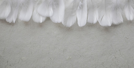 Angelic White feather header - fluffy white feathers placed in a row forming a header against rustic pale off white hand made paper with copy space